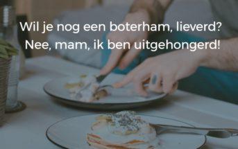 honger_logica